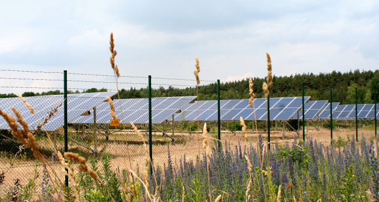 Energía fotovoltaica en España y Alemania 2014, la fotovoltaica sigue creciendo