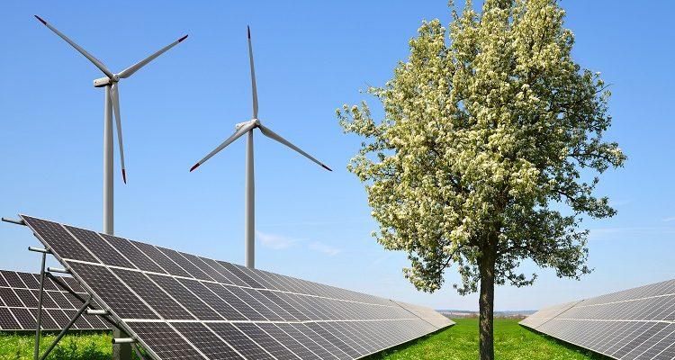 Segunda subasta de energía renovable en España