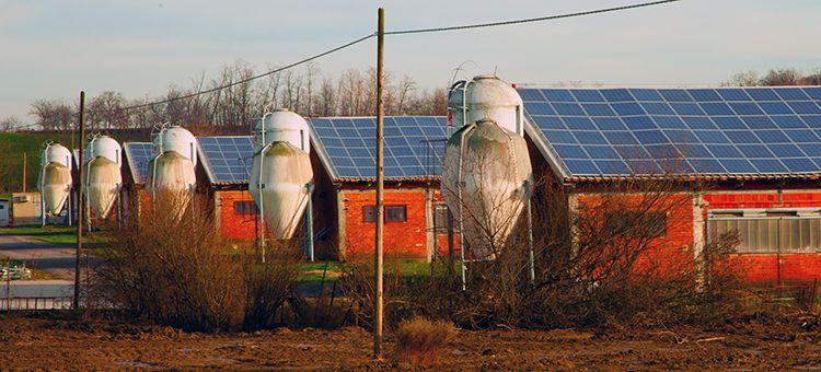 Crecimiento ligero en el sector fotovoltaico español en 2016